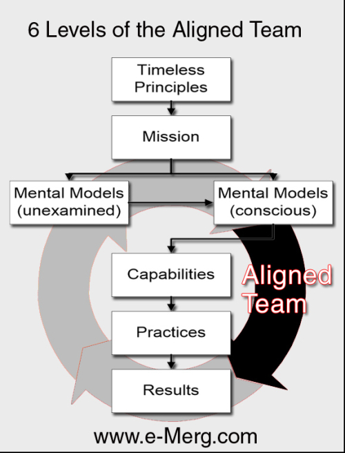 Emerg-6-Levels-Aligned-Team